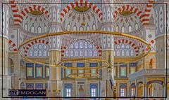 ADANA (01dgn) Tags: adana adanasabancimerkezcamii sabancicamii merkezcamii mosque moschee cami interior holy travel sonyilce7