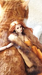 A-Z Challenge 3.0: C - Camouflaged (YOKO*DOLLS) Tags: cat doll eden fashion royalty barbie integrity