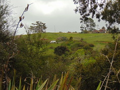20191025-132848 (LSJHerbert) Tags: auckland geo:lat=3659750773 geo:lon=17466783714 geotagged millwater newzealand nzl silverdale housingdevelopment river