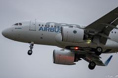 A319-17N Airbus // D-AVWA (Luc_slf) Tags: a319 a319neo a319lovers airbus aéronautique aeronaitics aeroporttoulouseblagnac aeroport avion aeronautics airport aviation airbuslover airbustest toulouseairport toulouse toulouseblagnac testflight test tls flighttest