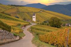 Katzenthal (Alsace, F) (pietro68bleu) Tags: hautrhin alsace vignoble vignes collinessousvosgiennes automne coucherdesoleil