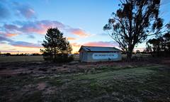ON THE WAY TO TASMANIA (16th man) Tags: coonabarabran westwyalong grenfell parkes forbes tasmaniatrip2019 canon eos eos5dmkiv