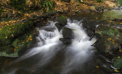 Beeley Brook (l4ts) Tags: landscape derbyshire peakdistrict darkpeak beeley beeleybrook beeleyplantation ford waterfall longexposure circularpolarisingfilter autumn autumncolours
