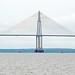 DSC00181 - Rio Negro Bridge
