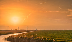 A Dutch Sundown in Holland. (Alex-de-Haas) Tags: 1635mm d500 dutch europa europe holland nederland nederlands netherlands nikkor nikkor1635mm nikon nikond500 noordholland agriculture akkerbouw beautiful beauty boerenland carbonneutral electricity elektriciteit energie energy farmland farming groenestroom landbouw landscape landscapephotography landschaft landschap landschapsfotografie lente lucht mooi polder pracht renewable renewableenergy renewables schoonheid skies sky spring sundown sunset wind windenergy windfarm windpark windpower windturbine windenergie windmolen windmolenpark zonsondergang burgerbrug northholland