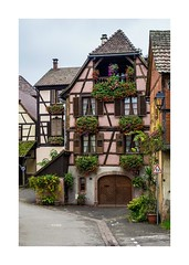 Hunawihr (Peter Jaspers) Tags: frompeterj© olympus zuiko omd em10 1240mm28 alsace hautrhin grandest hunawihr plusbeauxvillagesdefrance autumn france french flowers colombages maisonàcolombage halftimberedhouses