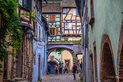Riquewihr (Peter Jaspers) Tags: frompeterj© 2019 olympus zuiko omd em10 1240mm28 france french alsace grandest routedesvins riquewihr lesplusbeauxvillagesdefrance history medieval hautrhin halftimberedhouse maisonàcolombages architecture