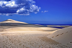 Dunes (Ciceruacchio) Tags: dune duna sable sand sabbia ocean oceano sea mer mare côteatlantique atlanticcoast costaatlantica pilat gironde nouvelleaquitaine france francia frankreich nikon