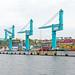 DSC00245 - Terminal Cranes