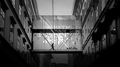x silhouette x (christikren) Tags: vienna city building silhouette architecture contrast blackwhite transparent absoluteblackandwhite christikren wien windows reflection monochrome dark view street streetphotography urban human canonpowershotg5x