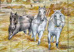 3 Horses,   National Museum of the Azulejo (National Tile Museum), Lisbon (Ray in Manila) Tags: horses art portugal ceramics lisbon handpainted tilemuseum eos650d museum gallery azulejo nationalmuseum museunacionaldoazulejo madrededeusconvent