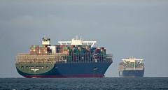 EVER GOODS & EVER GLOBE (kees torn) Tags: evergifted evergoods maasmond hoekvanholland containerschepen calandkanaal europoort ret fastferry denieuweprins