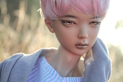 IMG_7927 (✿ Ernestine of Apples) Tags: bts 봄날 jimin springday supiadoll supiadreamingrosy pinkwig