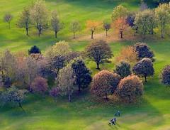 Autumn Trees (Edinburgh Photography) Tags: landscape trees autumn colours golf golfers arthurs seat hill edinburgh nikon d7000