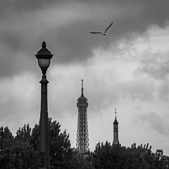 Who's Eiffel Tower? (Jean-Luc Peluchon) Tags: france capitalcity capitale bw blackandwhite noiretblanc pov city ciel sky fz1000 architecture town toit toiture roof roofing tour tower urbain urban building église church monochrome