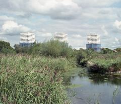 Fuji Industrial East London (Alexander Savin) Tags: london bethnalgreen fuji fujifilm fujifilmindustrial 35mm film analog hackney columbiaroadflowermarket