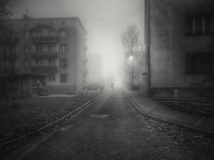 Morning (wojciechpolewski) Tags: morning blackandwhite blanconegro blackwhite schwarzweis buildings poland wpolewski foggyweather foggy foggymorning day emptystreet urban street