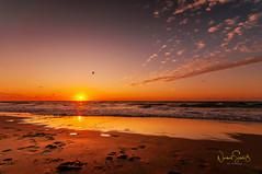 """North sea sunset (nigel_xf) Tags: juist """"north sea"""" island insel nordsee sand sonnenuntergang sunset sonne sun sunrays sonnenstrahlen strand beach wind storm sturm naturschauspiel nature natur einzigartig amazing nikon d300 nigel nigelxf vsfototeam meer ozean töwerland niedersachsen strandliebe inselliebe inselzauber reflections reflexions reflektionen spiegelung"""