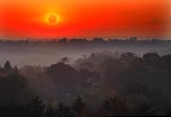 *** (klauslang99) Tags: klauslang nature sunrise fog morning