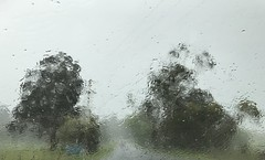 Hailstones on the windscreen (csmramsden) Tags: cf19 stone