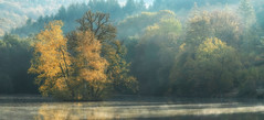 Foggy morning pano (Parchman Kid (Jerry)) Tags: büdingen lake yellow green foggy morning autumn leaves water fog sunrise parchmankid sony a6500 jerry burchfield greatphotographers landscape ilce6500 thiergartenweiher ambiance ambience mood ambient ambiant moody atmosphere