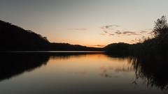DSC09990 (Paddy-NX) Tags: 2019 20191007 bealpha bygholmsø denmark eu europe horsens lake landscape landscapephotography sony sonya77ii sonyalpha sonyalpha77ii sonyimages sonysal1650 sunset