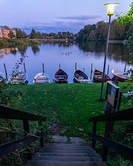 DSC00013 (Paddy-NX) Tags: 2019 20191007 bealpha bygholmsø denmark eu europe horsens lake landscape landscapephotography sony sonya77ii sonyalpha sonyalpha77ii sonyimages sonysal1650 sunset