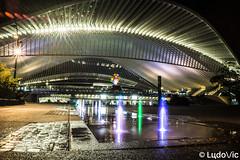 @Liège Guillemins (Lцdо\/іс) Tags: liège guillemins train station calatrava architecture architektur night nightcity belgique belgium belgie belgian belge belgica wallonie wallone région long exposure pose lцdоіс