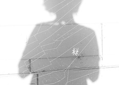 Tangled (sydneyharter) Tags: walterscott shakespeare blackandwhite web spider selfie doubleexposure
