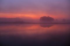 IMG_9807 (geraldtourniaire) Tags: natur nature nebel canon mittelfranken eos6d ef sonnenaufgang landschaft 14 50 usm