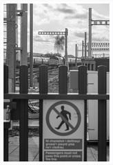 Access prohibited (Nodding Pig) Tags: cardiff central railway station train caerdydd glamorgan cymru wales greatbritain uk 2019 class37 dieselelectric locomotive englishelectric type3 37421 colas tfw transportforwales clag 201908152157101border