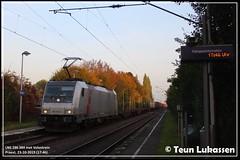 LNS 186 384, Praest (23-10-2019) (Teun Lukassen) Tags: lineas br186 bombardier traxx 186384 akiem volvo praest 2019 trains züge treinen