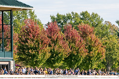 Scenic-wm (Casey Lynn Photos) Tags: horses horse kentucky horseracing keeneland equine 2019caseylaughter sport canon bluegrass action candid racehorse actionphotography canoncamera canonphotos canonlens canonphotography canonphoto canonusa canon7dmii fast racing horserace
