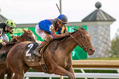 Belles the One (Casey Lynn Photos) Tags: horses horse kentucky horseracing keeneland equine 2019caseylaughter sport canon bluegrass action candid racehorse horserace actionphotography canoncamera canonphotos canonlens canonphotography canonphoto canonusa canon7dmii fast racing