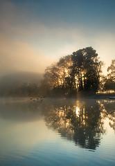 (Laetitia.p_lyon) Tags: fujifilmxt2 lyon parcdelatêtedor lac lake light lumière reflet reflection sunrise leverdusoleil brume mist haze