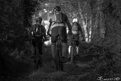 Cyclistes-9025 (gingkojac) Tags: 5èmemois cycliste vélo chemin noiretblanc blackandwhite