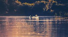 Serenity (Inka56) Tags: fishing fisherman boat river danuberiver sunset sunsetlight sunsetglow landscape riverside