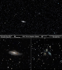 NGC7331_StephansQuintet_Composite_ReSizedDown2HD (homcavobservatory) Tags: homcav observatory deer lick galaxy group ngc 7331 7335 7336 7337 7340stephans quintet 7317 7318a 7318b 7319 7320c spiral gravitationally interacting canon 700d t5i dslr orion ed80t cf carbon fiber 80mm f6 triplet apochromatic refractor 08x televue field flattener focal reducer 8inch f7 criterion newtonian reflector losmandy g11 mount gemini 2 control system phd2 zwo asi290mc autoguider celestron shorttube astronomy astrophotography