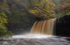 Sgwd Gwladys (Daryl 1988) Tags: water waterscape wales rapids torrent current landscape landscapephotography waterfall waterfallcountry visitwales 2019 october autumn autumncolour colour season outdoors nature nationalpark natural sgwdgwladus trees foliage walk nikon nikond500 1680mm photography photo waterway capture camera exposure longexposure slowshutter river afonpyrddin breconbeacons falls beautiful naturalbeauty beauty wow adventure explore inexplore view viewpoint vista