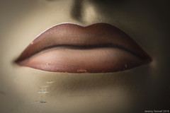 Lips that are not made for kissing (zolaczakl) Tags: uk mannequin october fake 2019 sigma50mmf28macro nikond800 photographybyjeremyfennell jeremyfennellphotography england bristol showroomdummy lips macromondays