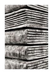 Carved Books (PeteZab) Tags: wood texture carving treetrunk book books mono blackandwhite bw woodthorpepark nottingham england uk