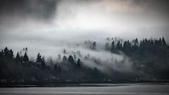 Vashon Island (Paddy O) Tags: noir morning vashonislandferry olympicmountains monochrome winter pugetsound dawn westseattle blackwhite fog vashonisland 2019 seattle clouds