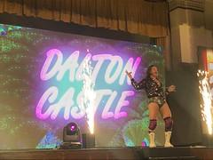 Dalton Castle, Ring of Honor (ROH) - Honor United, York Hall, Bethnal Green, London - 25/10/19 (Pub Car Park Ninja) Tags: ringofhonor roh honorunited yorkhall bethnalgreen london 251019 october 2019 uk england wrestling prowrestling
