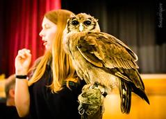 The Owls 2 (SoulStealer.co.uk) Tags: soulstealer portrait uk england london alternative twinpeaks davidlynch doublerclub damnfine peakies
