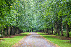 IMG_0007_adj (md93) Tags: scone palace perth scotland