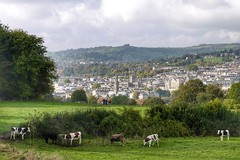Bath Cathedral viewed from Widcombe Hill in HDR (Matthew Hawkes) Tags: panasonic lumix widcombe hill view bath cows field hdr national trust church city vario countryside england english classic cathedral beautiful herd rabmlers sighteeing tourism
