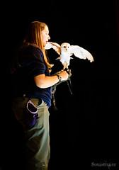 The Owls 3 (SoulStealer.co.uk) Tags: soulstealer portrait uk england london alternative twinpeaks davidlynch doublerclub damnfine peakies