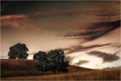 Grasland (linke64) Tags: thüringen deutschland germany natur landschaft hügel bäume baum gras wolken wiese wolkenhimmel rahmen