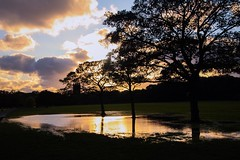sunset reflections (jmiller35) Tags: sunset sunsetlight trees pool water rain clouds sky canon parks liverpool merseyside photographers landscape low light