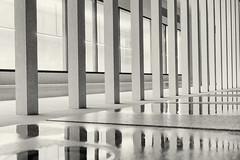 James-Simon-Galerie (Pascal Volk) Tags: berlin mitte museumisland museumsinsel isladelosmuseos jamessimongalerie berlinmitte nacht night noche artinbw schwarz weis black white blackandwhite schwarzweis sw bw bnw blancoynegro blanconegro highkey altorangodinámico highdynamicrangeimage hdr hdri hdraddicted herbst fall autumn otoño architecture architektur arquitectura canoneosr 50mm sigma50mmf14dghsm|art 50mmf14 50mmlens unpointquatre onepointfour niftyfifty manfrotto mt055xpro3 468mgrc2 dxophotolab dxohdrefexpro nikcollection dxosilverefexpro ilfordpanfplus50